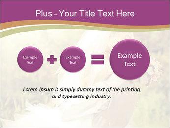 0000073243 PowerPoint Templates - Slide 75