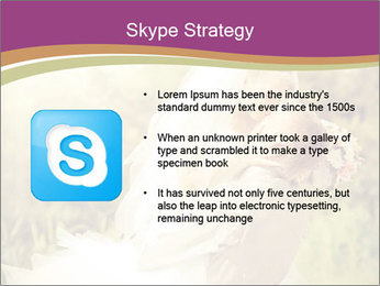 0000073243 PowerPoint Templates - Slide 8