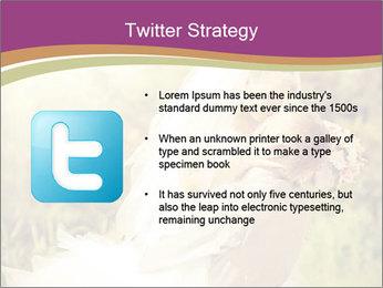 0000073243 PowerPoint Templates - Slide 9