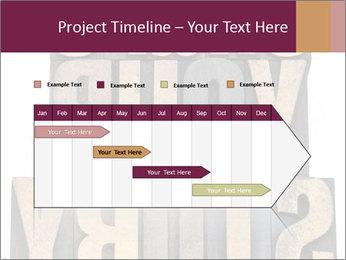 0000073244 PowerPoint Template - Slide 25