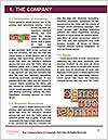 0000073244 Word Template - Page 3