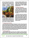 0000073245 Word Templates - Page 4