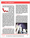 0000073250 Word Template - Page 3