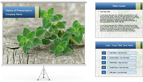 0000073252 PowerPoint Template