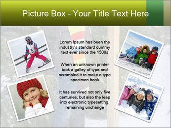 0000073256 PowerPoint Templates - Slide 24