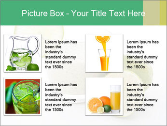 0000073262 PowerPoint Template - Slide 14