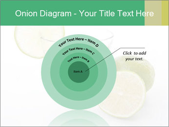 0000073262 PowerPoint Template - Slide 61