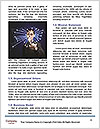 0000073266 Word Templates - Page 4