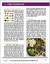0000073274 Word Template - Page 3
