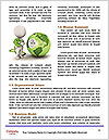 0000073275 Word Templates - Page 4