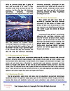 0000073282 Word Template - Page 4
