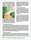 0000073285 Word Template - Page 4