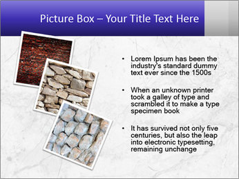0000073290 PowerPoint Template - Slide 17