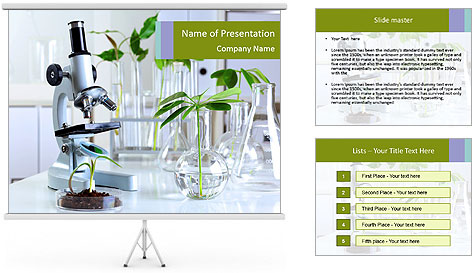 0000073302 PowerPoint Template