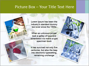 0000073302 PowerPoint Templates - Slide 24