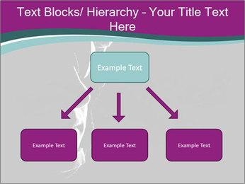 0000073306 PowerPoint Templates - Slide 69