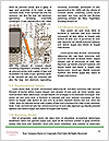 0000073308 Word Templates - Page 4