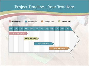 0000073309 PowerPoint Template - Slide 25
