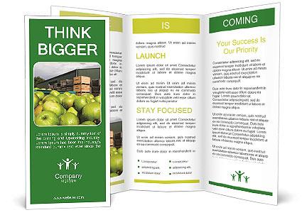 0000073319 Brochure Template