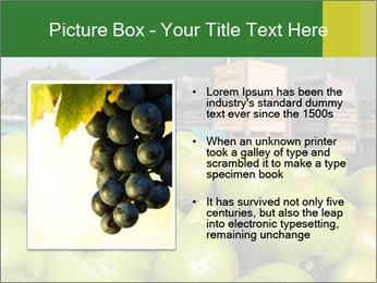0000073319 PowerPoint Templates - Slide 13