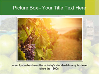 0000073319 PowerPoint Template - Slide 15
