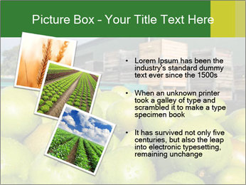 0000073319 PowerPoint Template - Slide 17