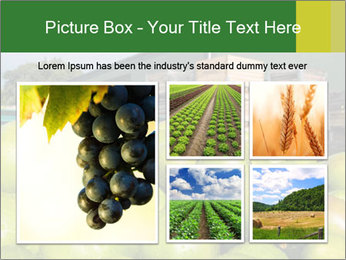 0000073319 PowerPoint Template - Slide 19