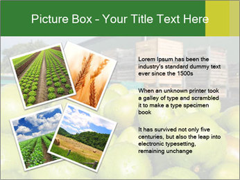 0000073319 PowerPoint Template - Slide 23