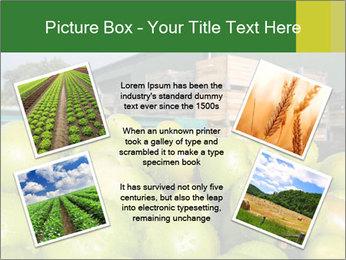 0000073319 PowerPoint Templates - Slide 24