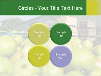 0000073319 PowerPoint Templates - Slide 38