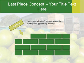 0000073319 PowerPoint Templates - Slide 46