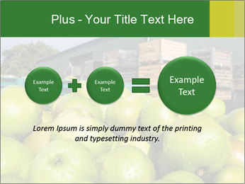 0000073319 PowerPoint Template - Slide 75