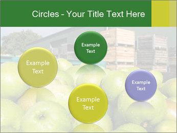 0000073319 PowerPoint Templates - Slide 77