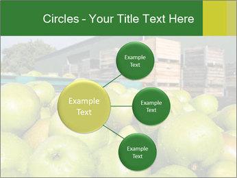 0000073319 PowerPoint Templates - Slide 79