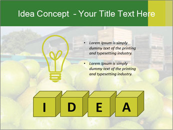 0000073319 PowerPoint Template - Slide 80