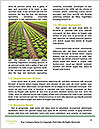0000073319 Word Template - Page 4