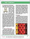 0000073333 Word Templates - Page 3