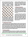 0000073333 Word Templates - Page 4