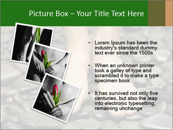 0000073340 PowerPoint Template - Slide 17