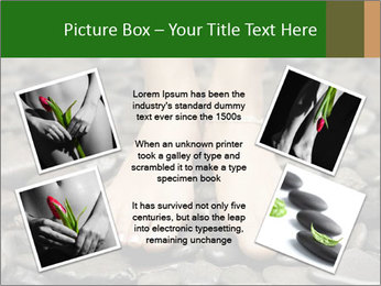 0000073340 PowerPoint Template - Slide 24