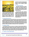 0000073344 Word Templates - Page 4