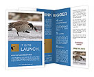 0000073347 Brochure Templates