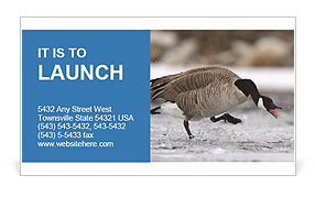 0000073347 Business Card Templates