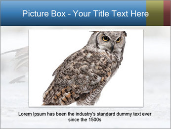 0000073347 PowerPoint Template - Slide 15