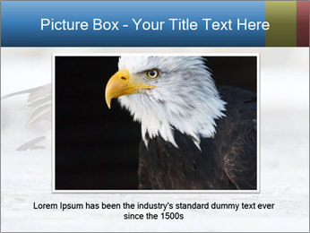 0000073347 PowerPoint Template - Slide 16
