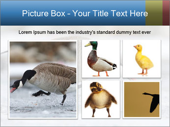 0000073347 PowerPoint Template - Slide 19
