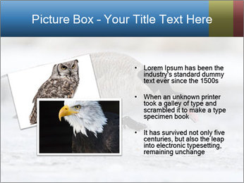 0000073347 PowerPoint Template - Slide 20