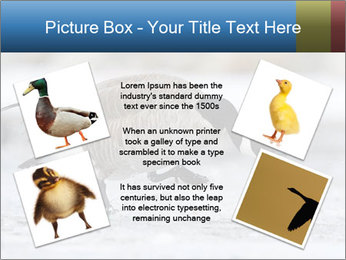 0000073347 PowerPoint Template - Slide 24