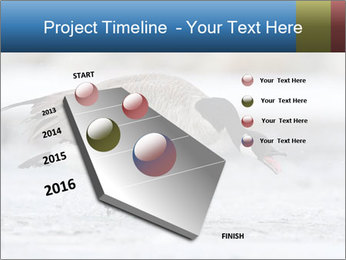 0000073347 PowerPoint Template - Slide 26