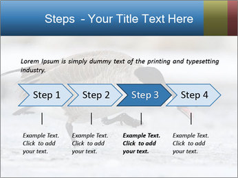 0000073347 PowerPoint Template - Slide 4